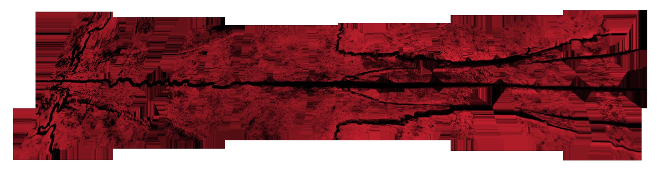 BLOODSPOT_transparency